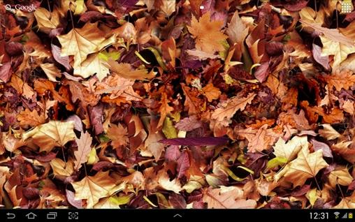 Descargar autumn leaves 3d para android gratis el fondo - Descargar autumn leaves ...
