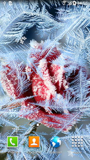 Frozen Flowers Live Wallpaper For Android Free Download Tablet And Phone