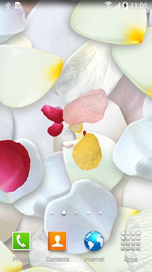 Petals 3d By Blackbird Wallpapers Live Wallpaper For Android Petals