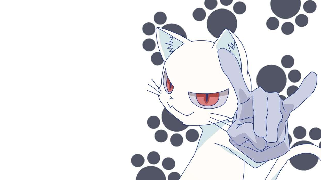 手機壁紙:動漫, 貓, #36543
