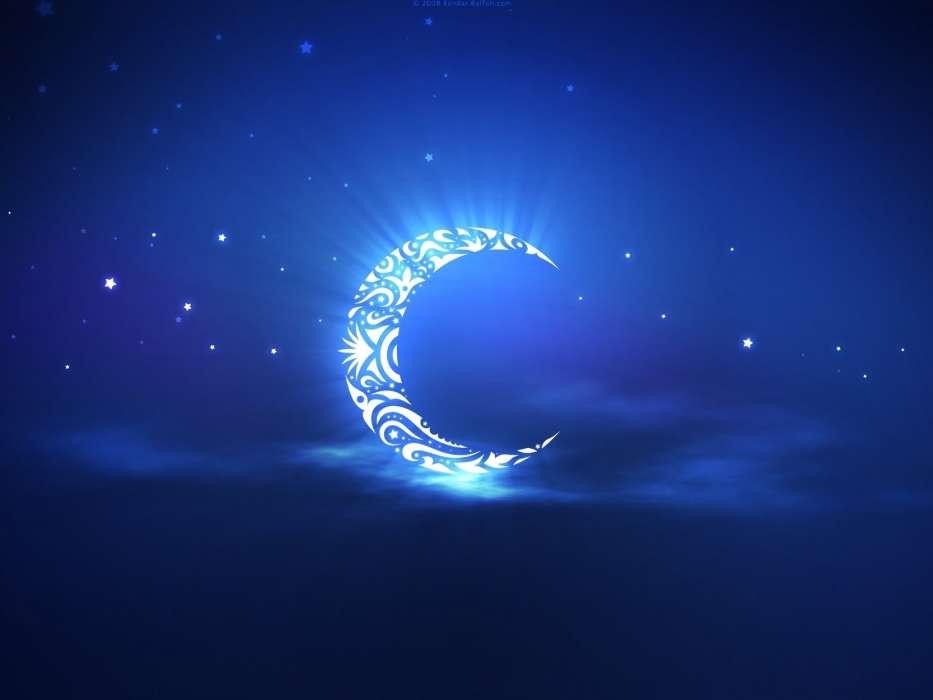 手机壁纸 背景是一个很亮的月亮 在月亮中有一只狼 正脸看着我 眼神图片