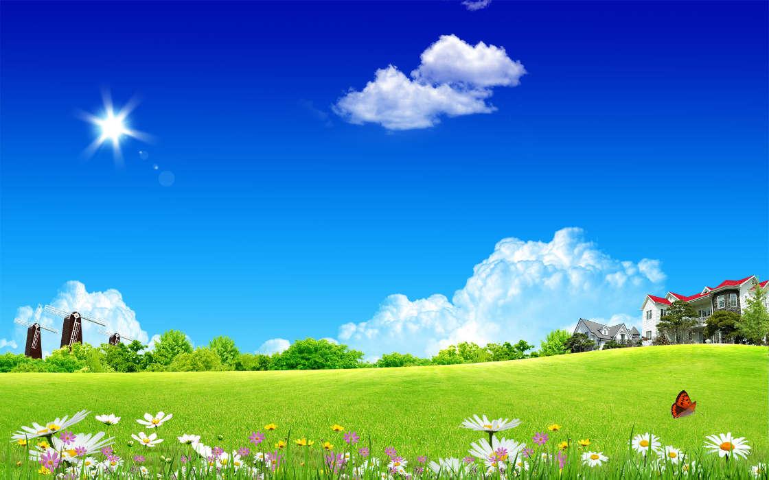 下载手机图片:景观, 草, 背景, 天空, 云,免费12954.