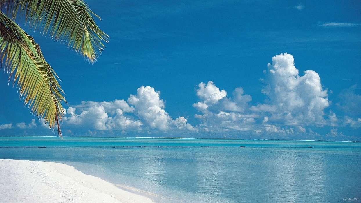 手机壁纸:景观, 海, 海滩, 夏天, #16470