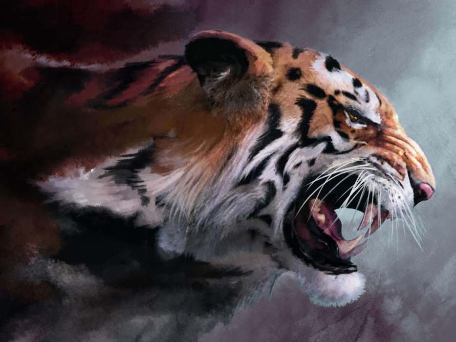 手机壁纸:动物, 老虎, 图片, #25654
