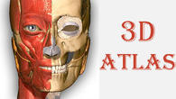 Скачати Anatomy learning - 3D atlas на Андроїд - кращу програму на телефон і планшет.