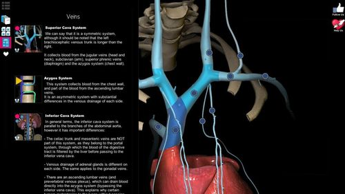 Capturas de tela do programa Anatomy learning - 3D atlas em celular ou tablete Android.