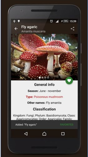 Screenshots of Book of mushrooms program for Android phone or tablet.