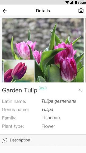 PictureThis - Plant identification app for Android, download programs for phones and tablets for free.