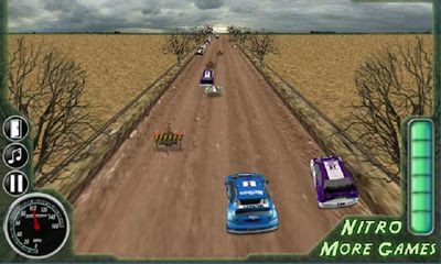 3D Rally Fever screenshot 2