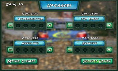 3D Rally Fever screenshot 3