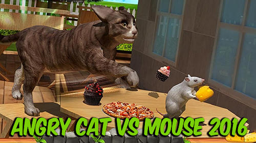 Angry cat vs. mouse 2016