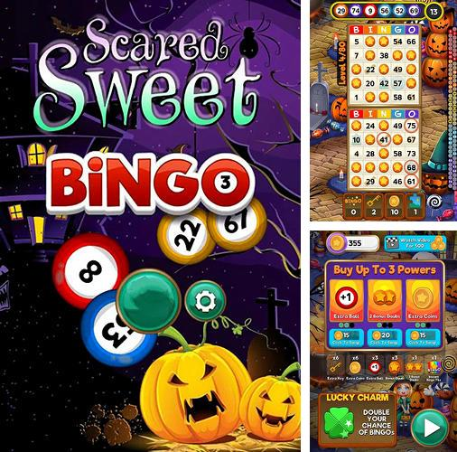Bingo quest: Halloween holiday fever