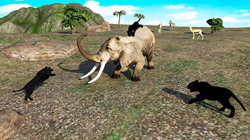玩安卓版Black panther simulator 2018。免费下载游戏。