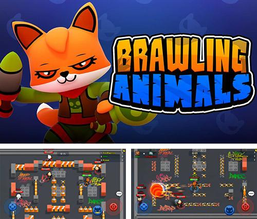 Brawling animals