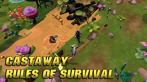 Castaway: Rules of survival