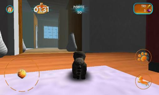 Screenshots von Cat simulator 2015 für Android-Tablet, Smartphone.