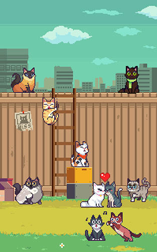 Screenshots do Cats jump! - Perigoso para tablet e celular Android.