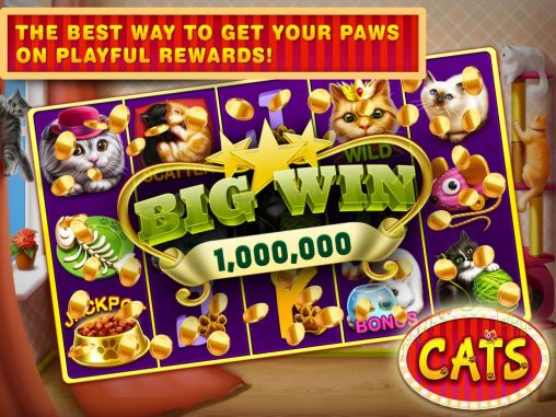 Screenshots von Cats slots: Casino vegas für Android-Tablet, Smartphone.
