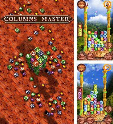 In addition to the game Happy Builder 2 for Android phones and tablets, you can also download Columns master 3D for free.