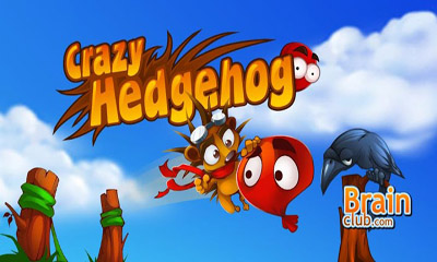 Crazy Hedgehog