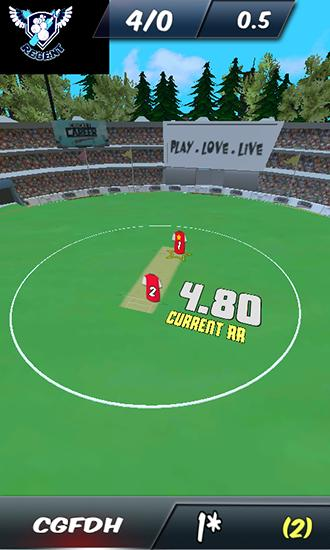 Screenshots von Cricket career: Biginnings 3D für Android-Tablet, Smartphone.
