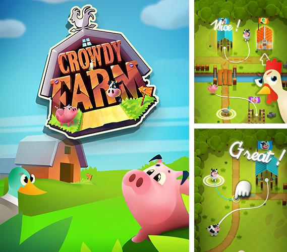 Crowdy farm: Agility guidance