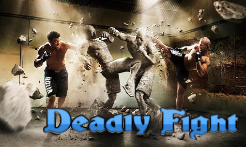 Deadly fight poster
