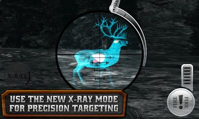 Screenshots do Deer Hunter Reloaded - Perigoso para tablet e celular Android.