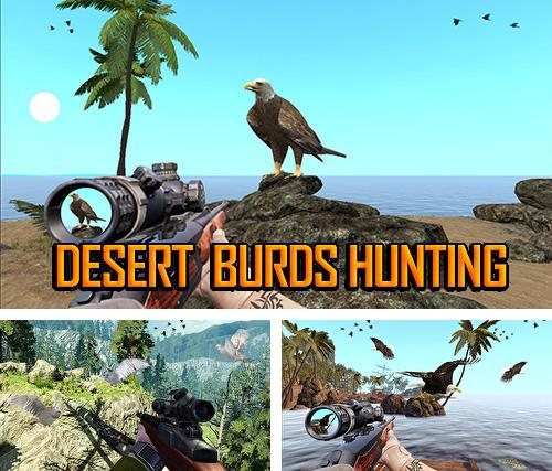Desert birds hunting shooting