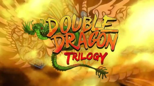 Double dragon: Trilogy poster