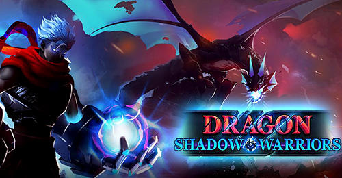 Dragon shadow warriors: Last stickman fight legend обложка