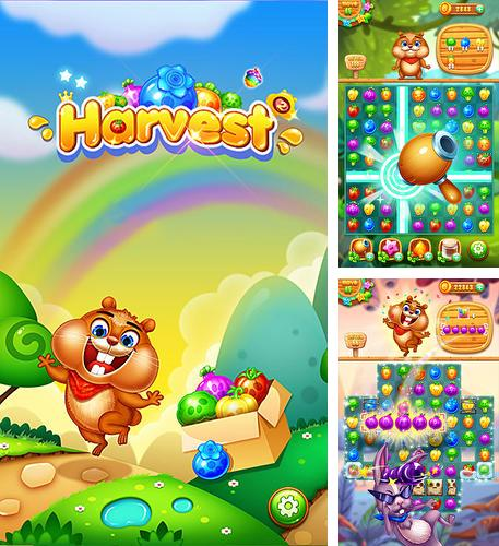 In addition to the game Tiger: The gems hunter match 3 for Android phones and tablets, you can also download Farm harvest 2 for free.