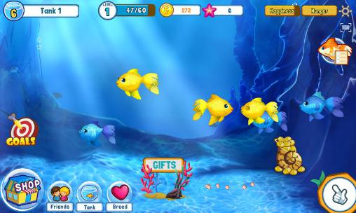 Fish adventure: Seasons screenshot 1