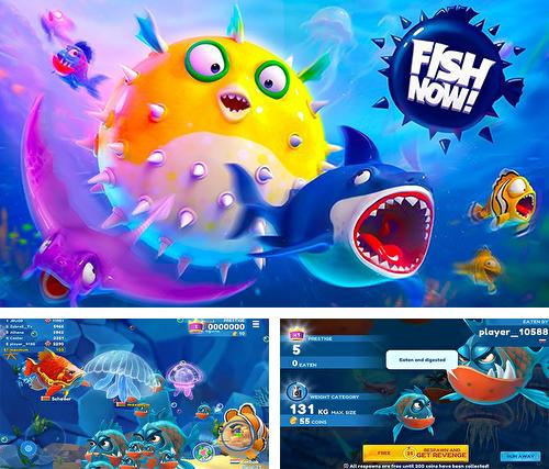 Fish now: Online io game and PvP battle