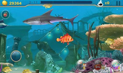 Fish Predator screenshot 1