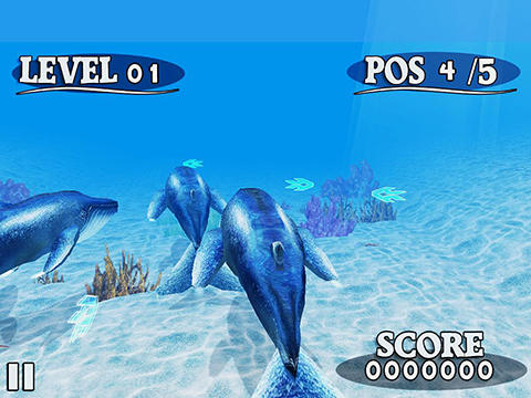 Screenshots von Fish race für Android-Tablet, Smartphone.
