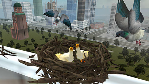 Flying bird pigeon simulator 2 screenshot 2