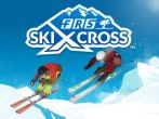 FRS Ski cross APK
