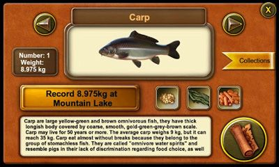 Screenshots of the Gone Fishing for Android tablet, phone.