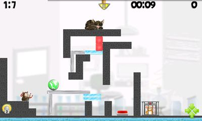Get full version of Android apk app Hamster Attack! for tablet and phone.