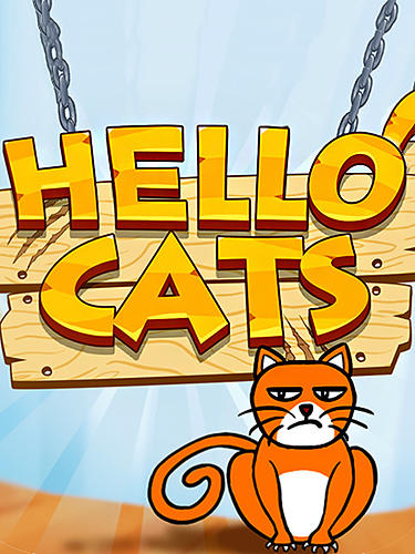 Hello cats poster