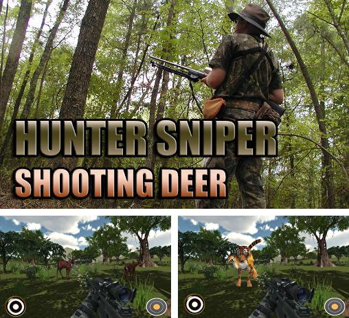 Hunter sniper: Shooting deer
