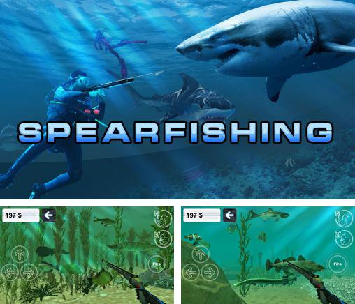 Hunter underwater spearfishing