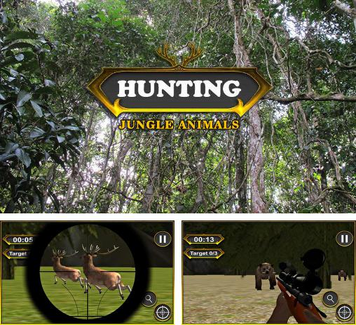 Hunting: Jungle animals