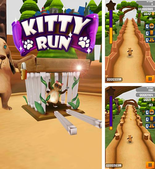 Kitty run: Crazy cats