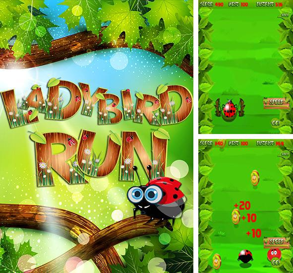 In addition to the game City Jump for Android phones and tablets, you can also download Ladybird run for free.
