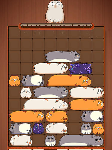 Maru slide: Block puzzle screenshot 2