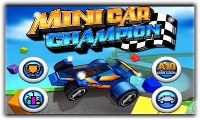 Minicar Champion Circuit Race