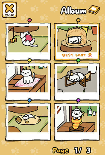 Neko atsume: Kitty collector screenshot 2