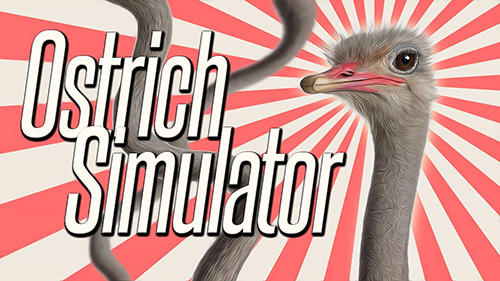Ostrich bird simulator 3D